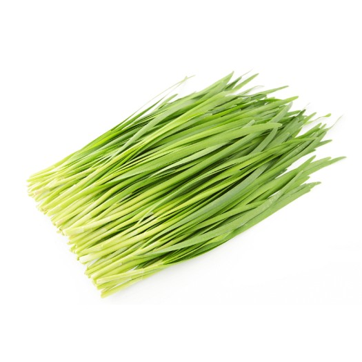 Chinese Chives leaf