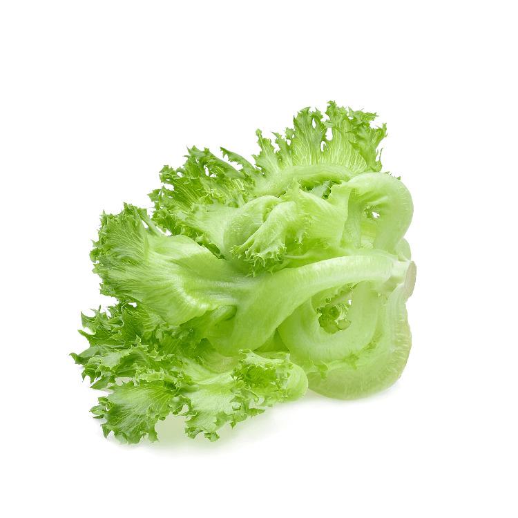 Frillice Lettuce