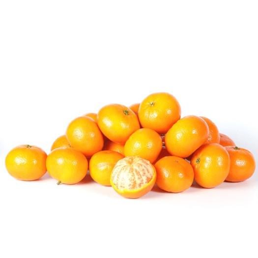 Mandarin Orange (Chinese Small Orange)