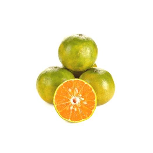 Tangerine Orange